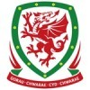 Wales Tröja Barn
