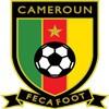 Kamerun Tröja