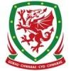 Wales EM 2020 Tröja